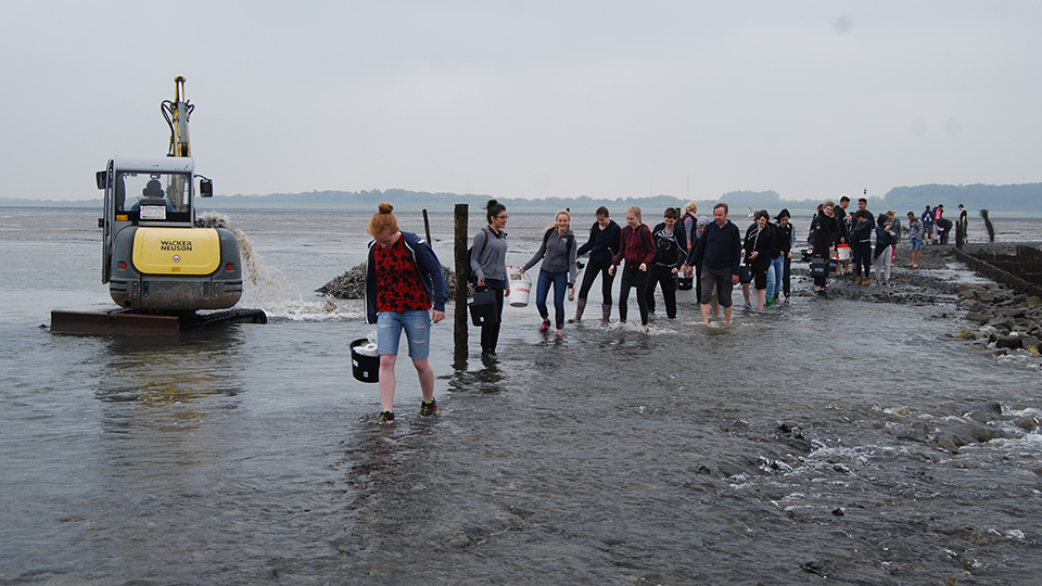 Students in the Wadden Sea at Sahlenburg