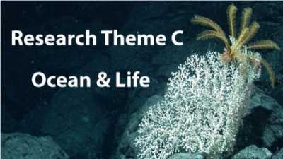 GLOMAR Research Theme C