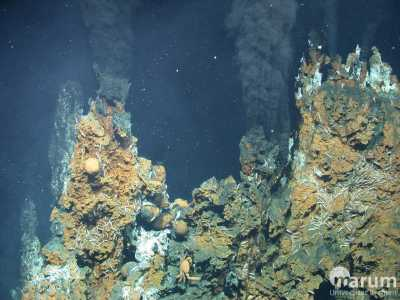 Black Smokers at Niua South (Photo: MARUM – Center for Marine Environmental Sciences, University of Bremen)